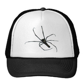 Black spider mesh hat