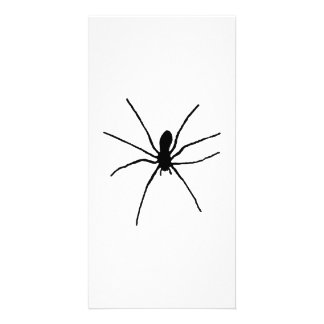 Black Spider Template Personalized Photo Card