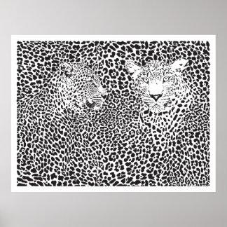 Black Spots Leopards Camouflaged Poster