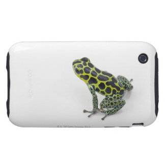 Black Spotted Green Poison Dart Frog Tough iPhone 3 Case