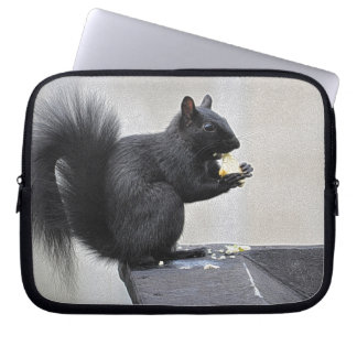 Black Squirrel Eating on Building Guttering Computer Sleeve