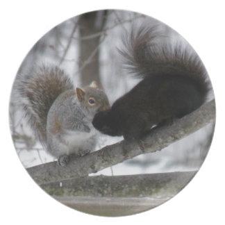 Black Squirrel Plate