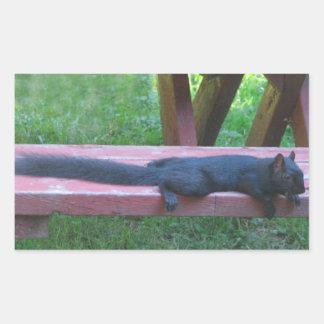 Black Squirrel Rectangular Sticker