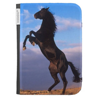 Black Stallion Kindle Cover