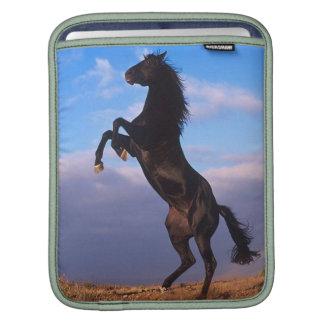 Black Stallion iPad Sleeve