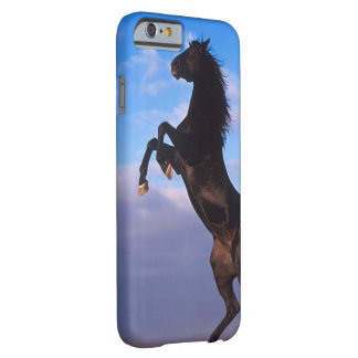Black Stallion iPhone 6/6s Barely There iPhone 6 Case