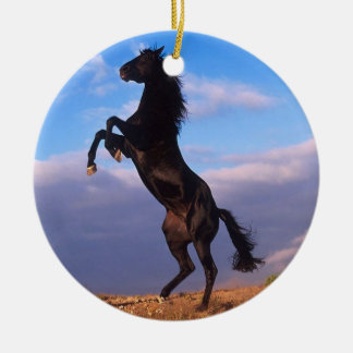 Black Stallion Round Ceramic Decoration