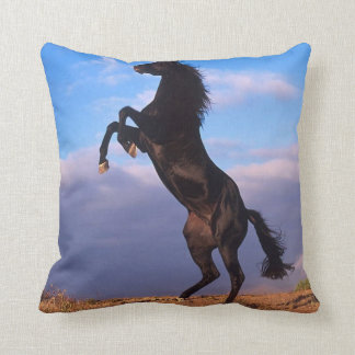 Black Stallion Throw Cushion
