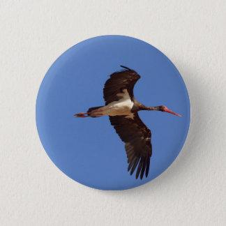 Black stork (Ciconia nigra) in flight 6 Cm Round Badge