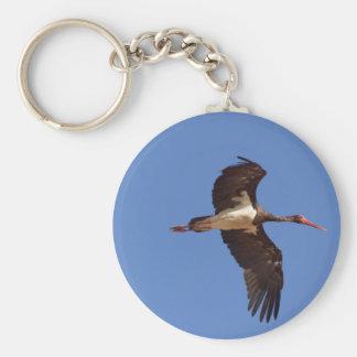 Black stork (Ciconia nigra) in flight Key Ring