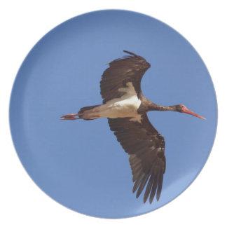 Black stork (Ciconia nigra) in flight Plate