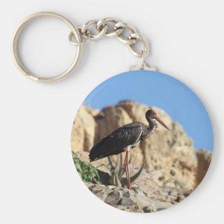 Black stork (Ciconia nigra) on a rock. Key Ring