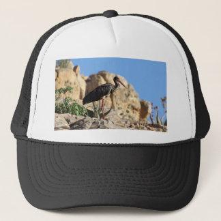 Black stork (Ciconia nigra) on a rock. Trucker Hat
