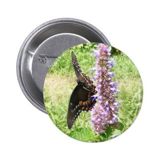 Black Swallowtail 61 ~ button