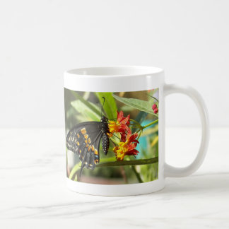 Black Swallowtail Butterfly#2-mug