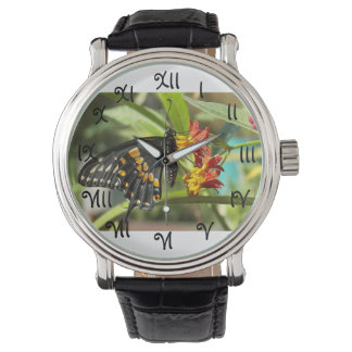 Black Swallowtail Butterfly #2-watch Watches