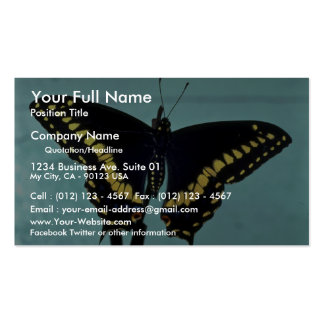 Black swallowtail butterfly business cards