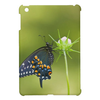 Black Swallowtail butterfly Case For The iPad Mini