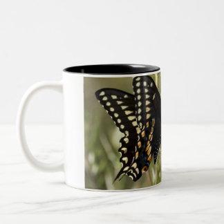 Black Swallowtail Butterfly Coffee Cup Coffee Mug
