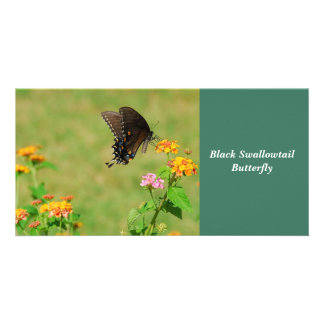 Black Swallowtail Butterfly Custom Photo Card
