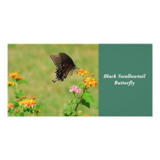 Black Swallowtail Butterfly Custom Photo Card