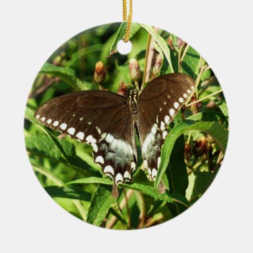 Black Swallowtail Butterfly Ornament