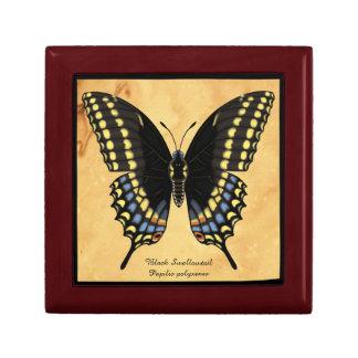 Black Swallowtail Butterfly Gift Box