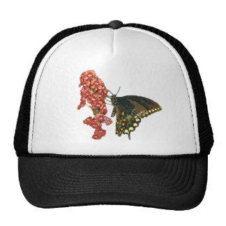 Black Swallowtail Butterfly Hat