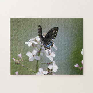Black swallowtail butterfly jigsaw puzzle