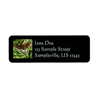 Black Swallowtail Butterfly Return Address Label