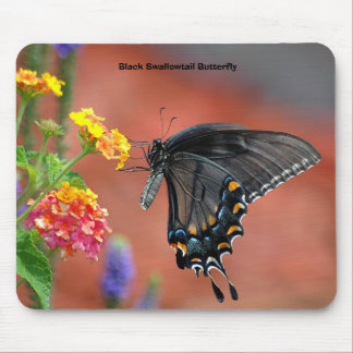 Black Swallowtail Butterfly Mouse Pad