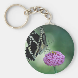 Black Swallowtail Butterfly on a Pink Flower Basic Round Button Key Ring
