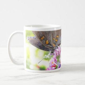 Black Swallowtail Butterfly on Buddleia Bush Mugs