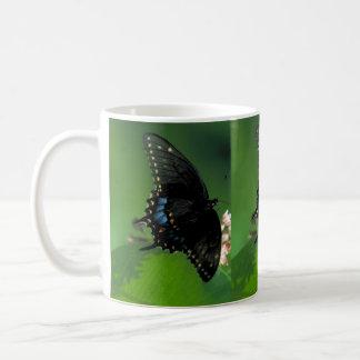 Black SwallowTail Butterfly on Flower Mug