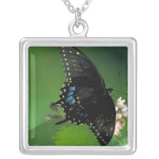 Black SwallowTail Butterfly on Flower Pendants