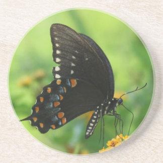 Black Swallowtail Butterfly on lantana Beverage Coasters