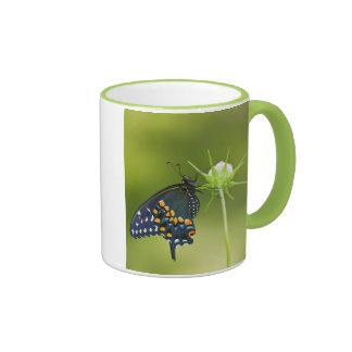Black Swallowtail butterfly Ringer Mug