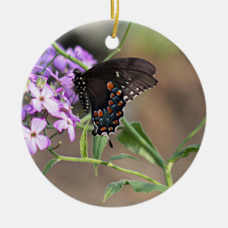 Black swallowtail butterfly round ceramic decoration