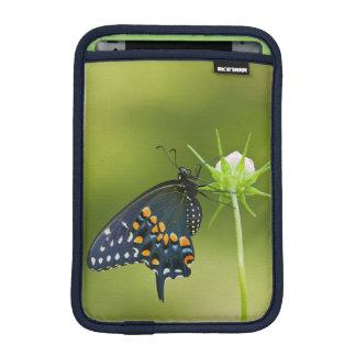 Black Swallowtail butterfly Sleeve For iPad Mini