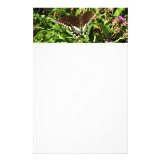 Black Swallowtail Butterfly Stationery