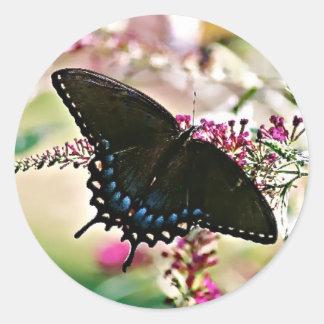 Black Swallowtail Butterfly Sticker