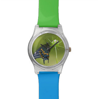 Black Swallowtail butterfly Watches