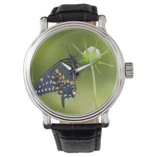 Black Swallowtail butterfly Wrist Watches