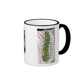 Black Swallowtail Caterpillar/Butterfly-mug