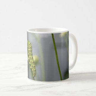 Black swallowtail caterpillar (parsleyworm) on Dil Coffee Mug