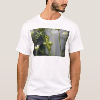 Black swallowtail caterpillar (parsleyworm) on Dil T-Shirt