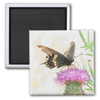 Black Swallowtail Magnet
