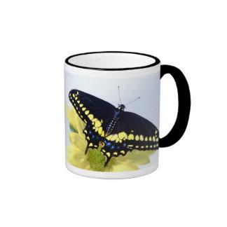 Black Swallowtail Ringer Mug