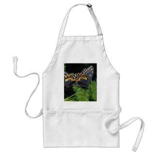 Black swallowtails mating apron