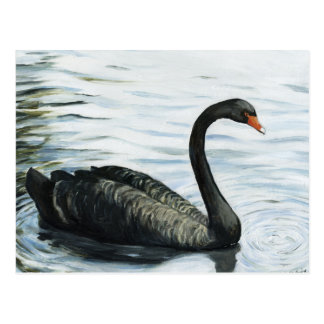 """Black Swan"" Bird Art Reproduction Postcard"
